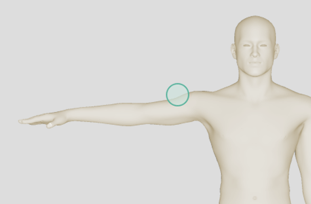 interactive-body-profile-alt